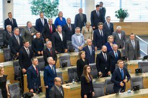 Ar įstatymų skaičius – geriausias Seimo darbo matas?