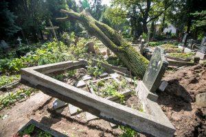 Audros padariniai Eigulių kapinėse: vaizdas – kaip po karo