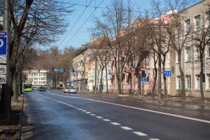 Permainos Vytauto prospekte tęsiasi: persodins visus medžius