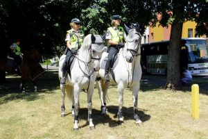 Policijos šventė visuomenei Birštone sulaukė gausaus smalsuolių būrio