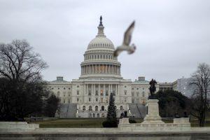 Senatorė E. Warren sieks tapti demokratų kandidate į JAV prezidento postą