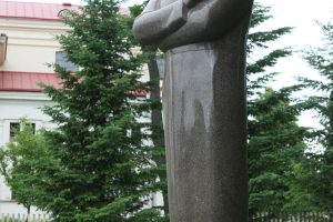 2019 - uosius grupė Seimo narių siūlo skelbti J. Naujalio metais