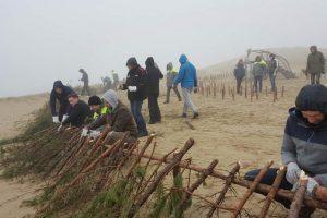 ESO darbuotojai Kuršių nerijoje tvarkė aplinką
