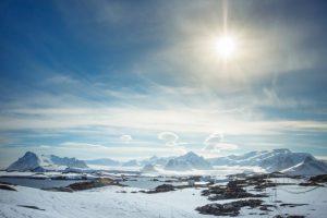 Antarktidoje mokslininkas nuėmė pirmą daržovių derlių