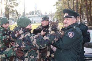 Valstybės sienos apsaugai pradedami rengti trys jauni vokiečių aviganiai