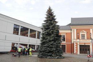 Klaipėdos žaliaskarė atkeliavo į Teatro aikštę