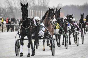 Žirgų lenktynės Sartuose – jau po mėnesio