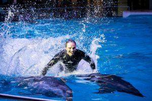 Į delfinariumą grįžęs šokėjas A. Liškauskas: esu jiems daugiau nei žuvis