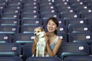 Izraelio kino teatre filmus galima žiūrėti su savo šunimi