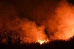 Karštis ir vėjas kursto miškų gaisrus Portugalijoje ir Korsikoje