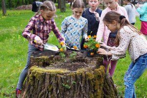 Panemunės senelių namuose žydės vaikų sodintos gėlės