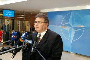 L. Linkevičius: NATO turi siųsti stiprią žinią Rusijai