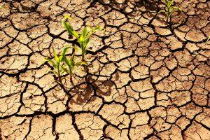 Dėl klimato kaitos daugėja ekstremalių meteorologinių reiškinių