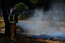 Ispanijos ugniagesiai grumiasi su didžiuliu miško gaisru