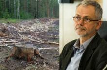 L. Balsys užsimojo apriboti miškų kirtimus saugomose teritorijose