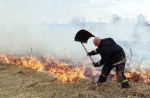 Pabudo didžiulę grėsmę keliantys žolės degintojai