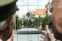 Seimo pirmininkas nepritaria įstatymui dėl Vyčio