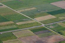 Pernai dažniausiai buvo registruojami privatūs žemės sklypai