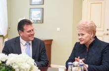 """D. Grybauskaitė: """"Gazprom"""" turi kompensuoti vartotojų patirtą žalą"""