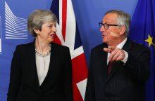 """Ministrai ragina Th. May išsiderėti naują sutartį arba atidėti """"Brexit"""""""