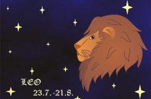 Draugystės horoskopas: kas artimiausias Liūto sielai?