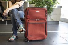 Afrikinio kiaulių maro kontrolė – iš keleivių bagažo konfiskuojami maisto produktai