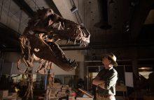 Mokslininkai: Kanadoje rastas tiranozauras – stambiausias iš iki šiol aptiktų
