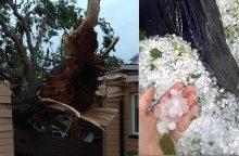Škvalas Lietuvoje vartė medžius, plėšė stogus: be elektros likę apie 300 žmonių