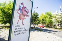 Pasvalyje telefoniniai sukčiai iš dviejų senučių išviliojo 2 tūkst. eurų