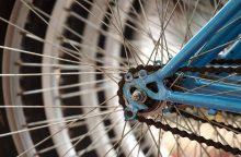 Tauragės rajone į automobilį rėžėsi girta dviratininkė
