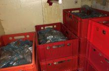 FNTT tyrimas Kaune: nelegali vištiena buvo išrūkoma ūkiniame pastate