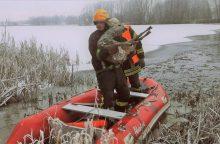 Mažeikiuose ugniagesiai gelbėjo lede įlūžusią stirną