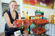 Lietuviškos braškės – už rekordinę kainą
