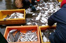 Tarp žuvų – ir šiukšlės