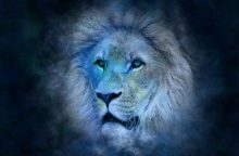 Dienos horoskopas 12 zodiako ženklų <span style=color:red;>(sausio 8 d.)</span>