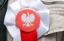 Vilniuje tarybos mandatų ir mero posto sieks alternatyvus lenkų komitetas