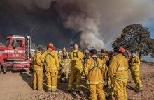 Kalifornijoje dėl miškų gaisrų paskelbta nepaprastoji padėtis