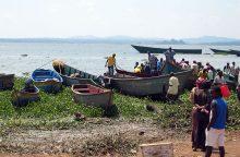 Viktorijos ežere apvirtus keltui nuskendo beveik 80 žmonių