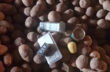 """Narkotikus """"užkonservavo"""" pipiruose ir paslėpė bulvėse"""