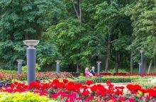 Lietuvos miestuose išsiplės žaliosios erdvės
