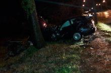 Karmėlavoje automobilis trenkėsi į medį