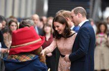 Princo Williamo ir Kate vaikelis turėtų gimti balandį