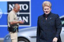 Prezidentė: NATO daliniai išdėstyti pagal pasenusią Šaltojo karo logiką