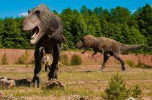 Moksliniai atradimai: dinozaurų evoliucija – visai kitokia?
