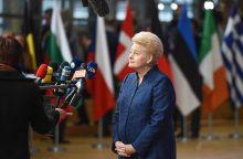 D. Grybauskaitė: pabėgėlių kvotų sistema – ne iki galo efektyvi
