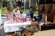 Palanga Joninių savaitgalį kviečia į tradicinį festivalį