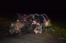 Lazdijų rajone per avariją žuvo vairuotojas, sužaloti dar penki žmonės