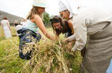 Rumšiškėse – naujojo derliaus ir Oninių šventė