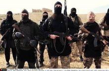 Politologas: Švedijos ministrės siūlymas – tarsi terorizmo įteisinimas